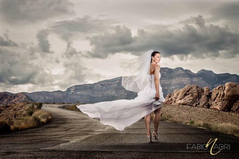 Red Rock Canyon Bride Photo