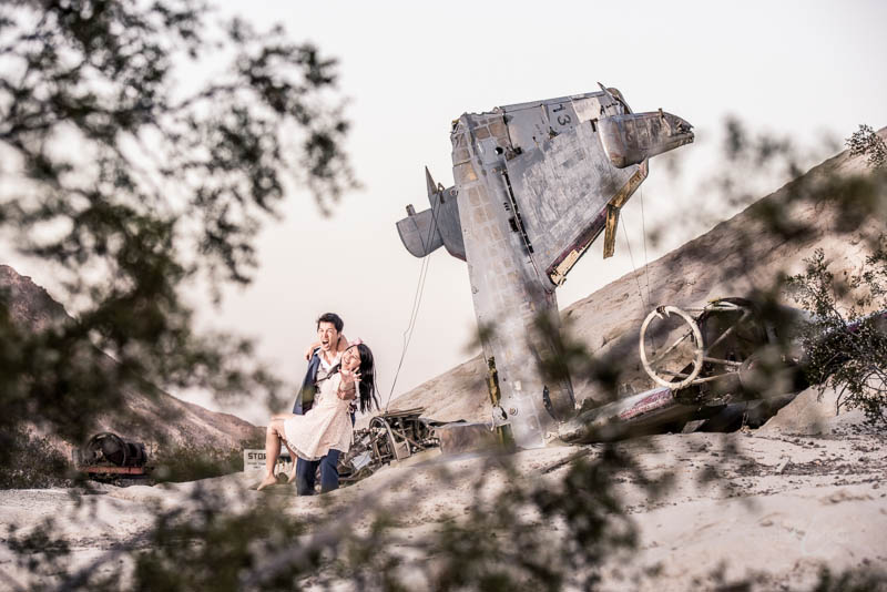 Nelson crashed airplane engagement photo