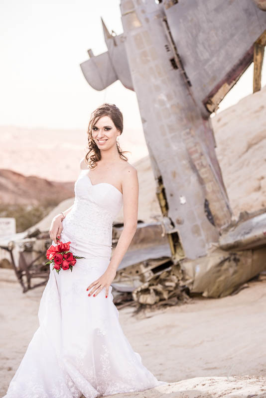 Bride Nelson crashed airplane photo