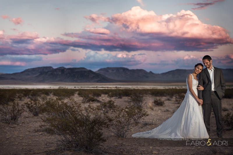 Desert Wedding Photo Pink Sky