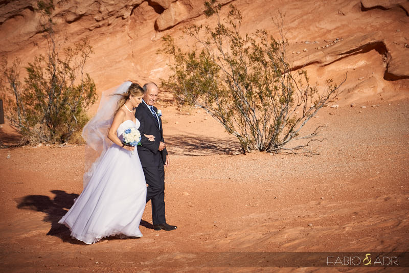 valley_of_fire_wedding_0011