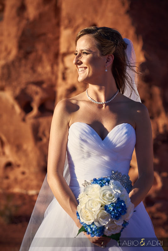 valley_of_fire_wedding_0020