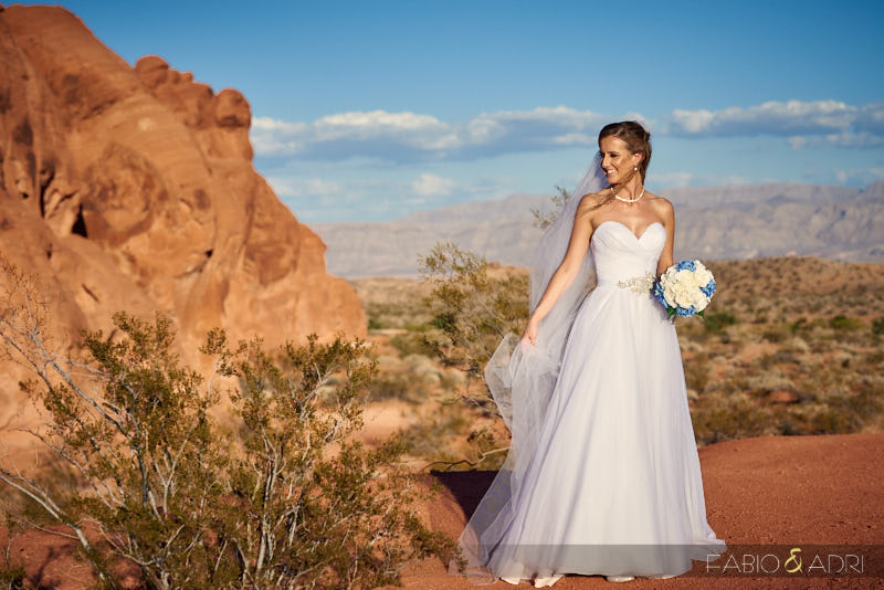 Bride at Valley of Fire