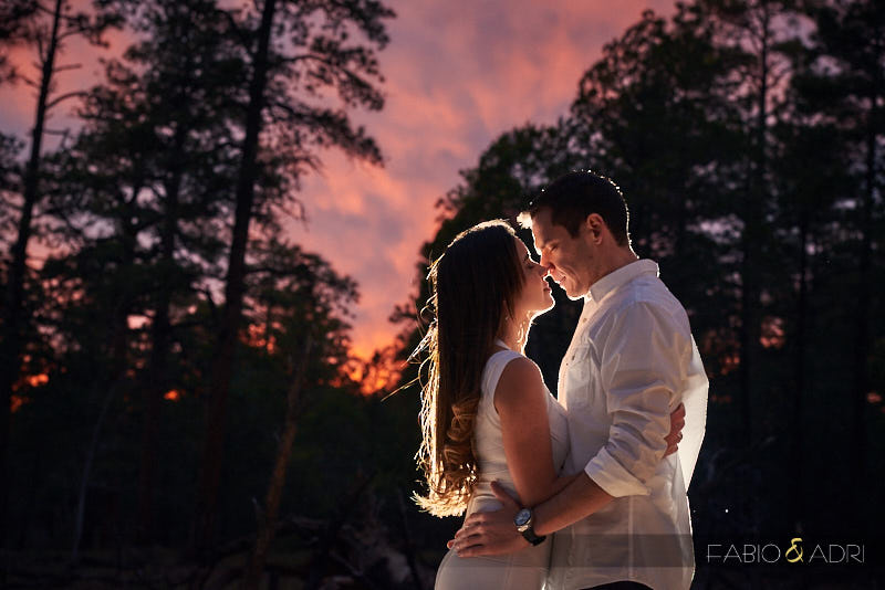 Engagement Romance in Ponderosa Pine Forest