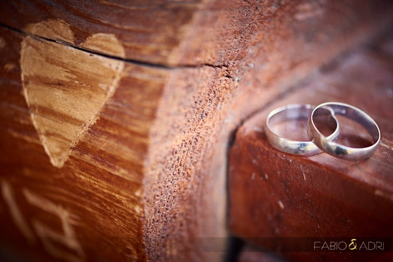 Ring Shot by Carved Wood Mt. Charleston