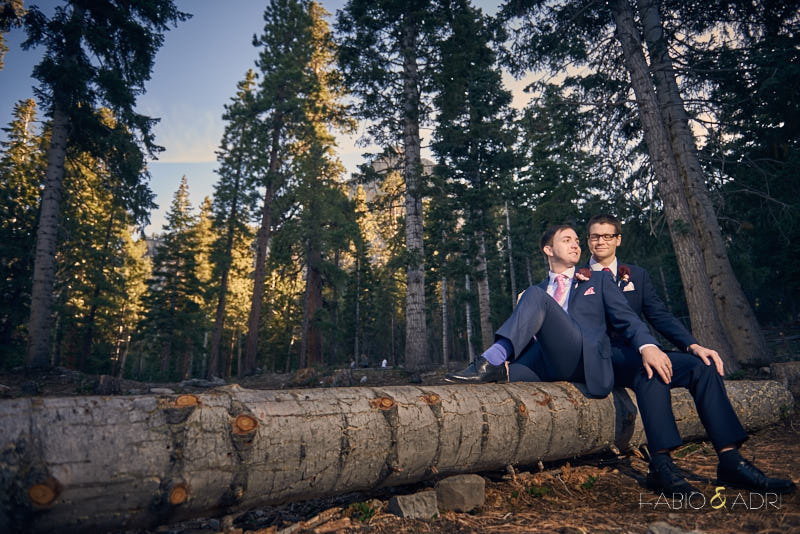 Mount Charleston Wedding LGBT