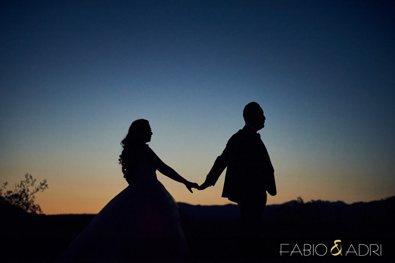 Las Vegas Desert Wedding Photographers