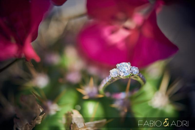 Engagement Ring Shot Desert Landscape