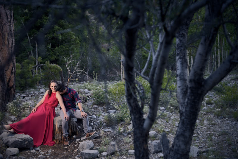 Mt Charleston Engagement Photos