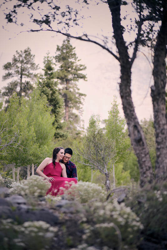 Mount Charleston Engagement Photo