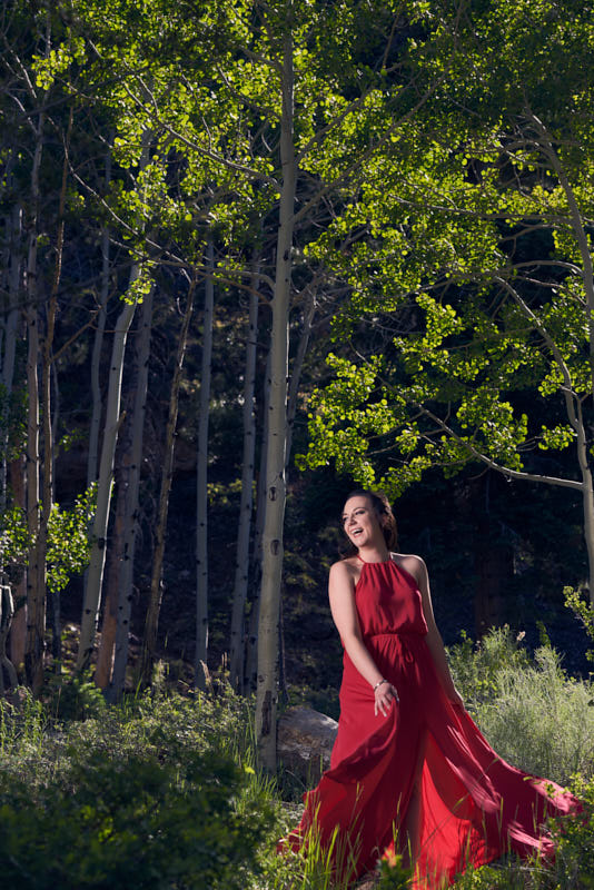 Mt Charleston Engagement Red Dress