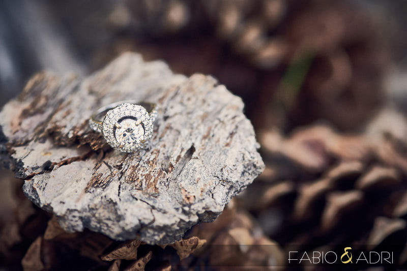Wedding Ring Shot in Woods