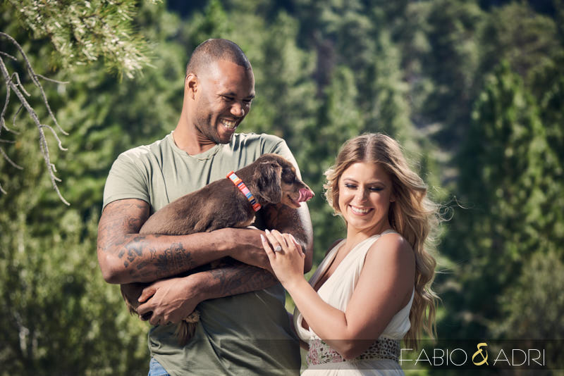 Mountain Engagement Session with Dog